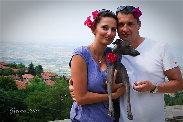 Taliansky chrtík Na dovolenku